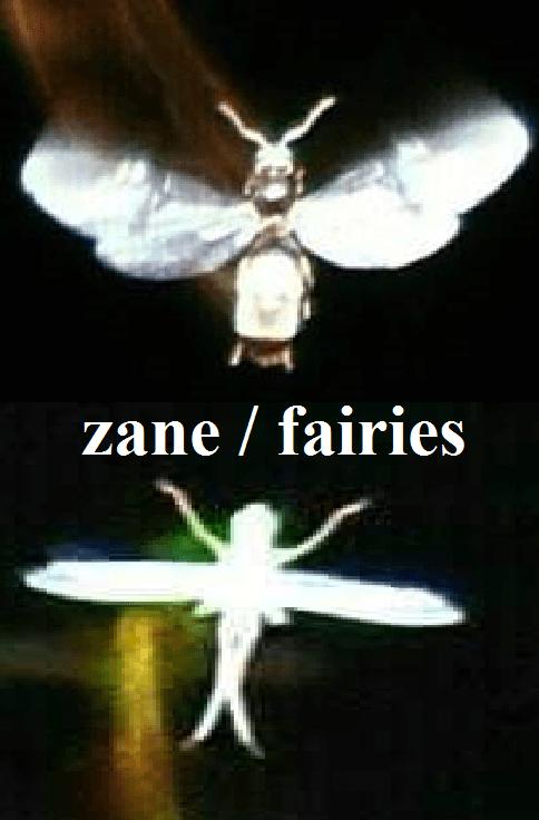 zaneeee